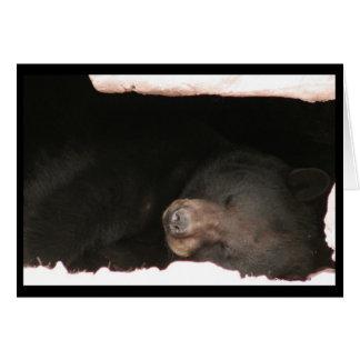 Carte d'ours noir de sommeil