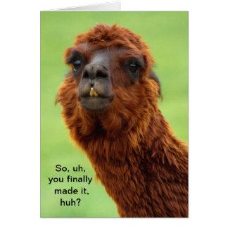 Carte drôle d'obtention du diplôme de lama