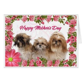 Carte du jour de mère - chiens de Shih Tzu -