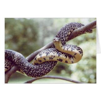 Carte du Roi serpent