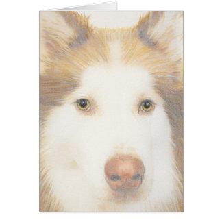 Carte enrouée de Malamute, chien de traîneau