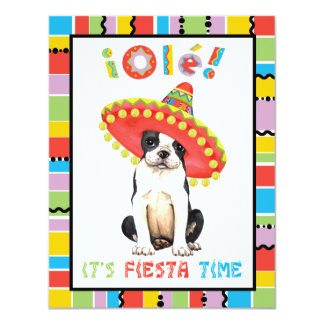 Carte Fiesta Boston Terrier