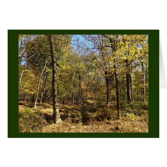 Carte : Forêt de Shenandoah avec Stephen