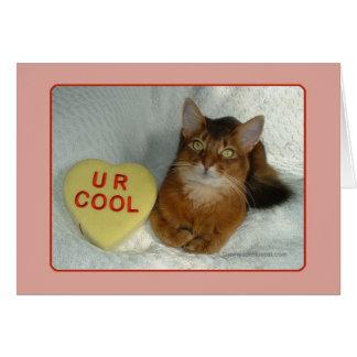 Carte fraîche de Valentine Kitty U R