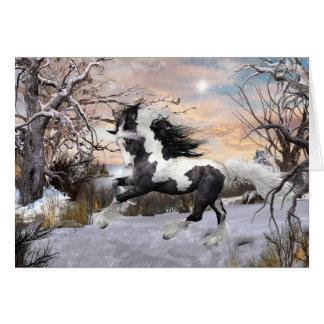 Carte gitane de vacances de cheval de Vanner