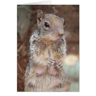 Carte humoristique d'écureuil de maman