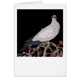 Carte impériale de pigeon de Torresian