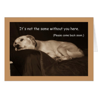 Carte jaune de chien de traîneau de mine de