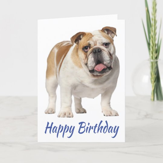 Carte Joyeux Anniversaire Anglais Bulldog Puppy Dog Zazzle Fr