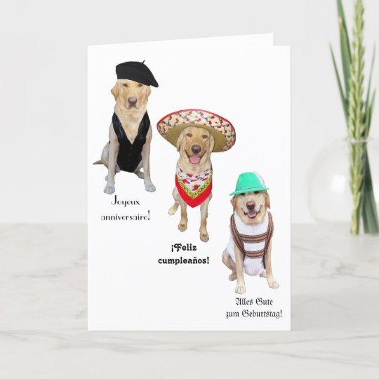 Carte Joyeux Anniversaire De Chien Drôle Dans Quatre