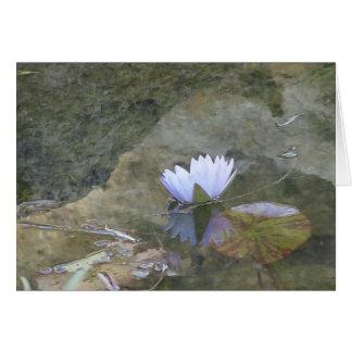 Carte lavenday pâle de nénuphar