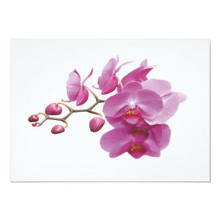 Carte Le mariage peu coûteux d'orchidées empaquette des