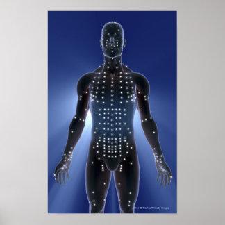 Carte légère des points d'acuponcture posters