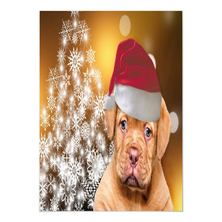 Carte Magnétique Christmas Dogue de Bordeaux