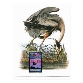 Carte maximum Audubon de héron de grand bleu
