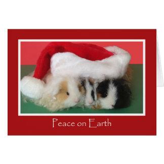 Carte mignonne de cobaye de Noël