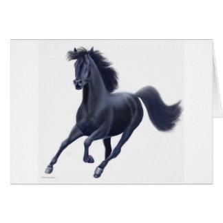 Carte noire de cheval de pur sang