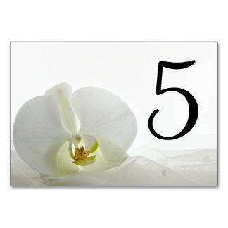 Carte Orchidée blanche et nombres nuptiales de Tableau