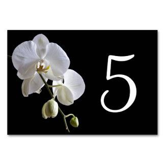 Carte Orchidée blanche sur des nombres noirs de Tableau