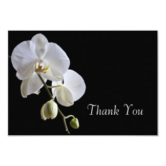 Carte Orchidée blanche sur les notes plates de Merci de