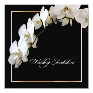 Carte Orchidées de PixDezines/phalaenopsis
