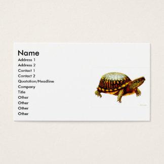 Carte orientale de profil de tortue de boîte