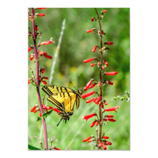 Carte Papillon et fleurs sauvages de machaon de tigre