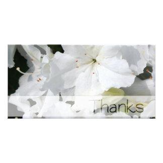 Carte photo blanc de Merci d'azalée