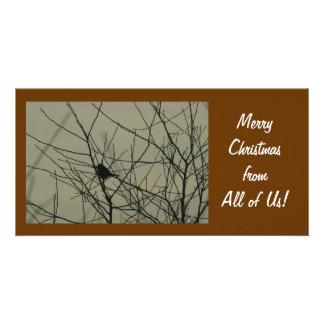 Carte photo de Noël :  Petit oiseau Photocartes