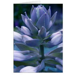 """Carte """"photographique"""" bleue de Hosta"""