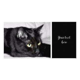Carte Portrait mignon de chat noir