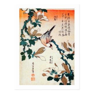 Carte Postale 文鳥とコブシ, moineau de Java de 北斎 et Kobushi, Hokusai