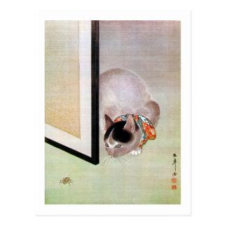 Carte Postale 猫と蜘蛛, chat de 東皐 et araignée, Toko