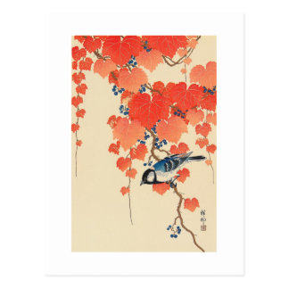 Carte Postale 赤い蔦に鳥, oiseau de 古邨 sur le lierre rouge, Koson,