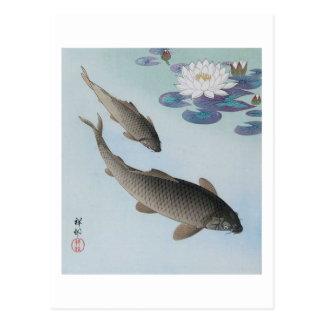 Carte Postale 黒鯉, carpe noire de 古邨, Koson, Ukiyo-e
