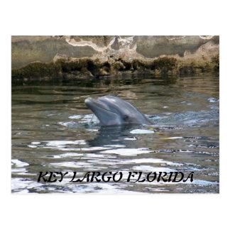 CARTE POSTALE 100_8578, LARGO PRINCIPAL LA FLORIDE