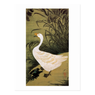 Carte Postale 13. 芦鵞図, roseau de 若冲 et oie, Jakuchū, art du
