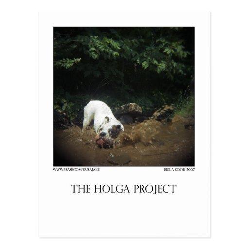 Carte postale 14 de parc de chien