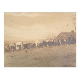 Carte Postale 15ème Cavalerie 1865 de PA