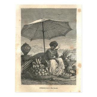 Carte Postale 1877 copie Rio Janeiro, terre et ses peuples