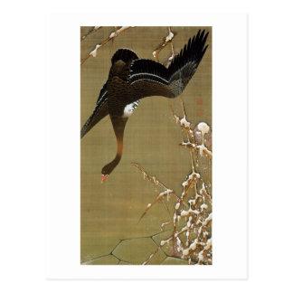 Carte Postale 26. 芦雁図, oie sauvage de 若冲, Jakuchū, art du Japon