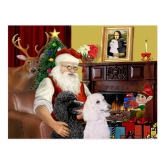 Carte Postale 2 caniches standard de Père Noël