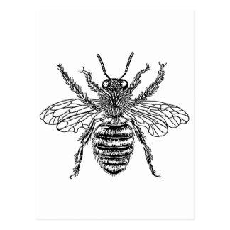 Carte Postale abeille