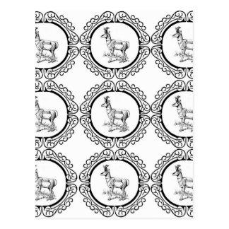 Carte Postale Abondance de Pronghorn