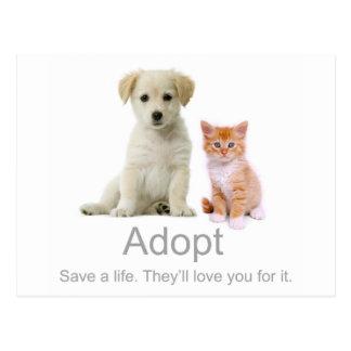 Carte Postale adoptez un animal familier