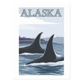 Carte Postale Affiche vintage de voyage des baleines #1- d'orque