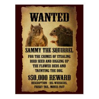 Carte Postale Affiche voulue avec l'écureuil