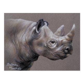 Carte postale africaine de dessin de rhinocéros