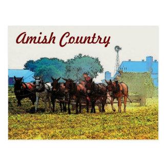 Carte postale agricole amish