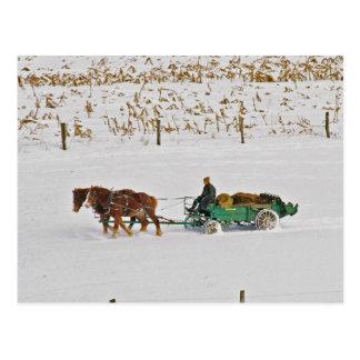Carte Postale Agriculteur amish d'hiver à la Travail-Carte